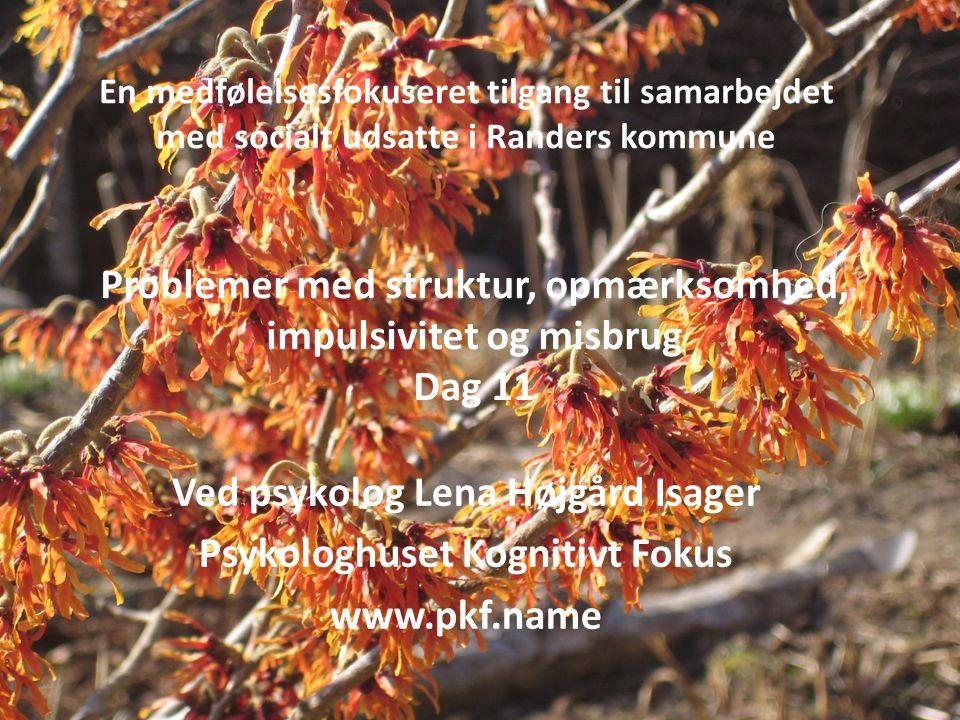 En medfølelsesfokuseret tilgang til samarbejdet med socialt udsatte i Randers kommune