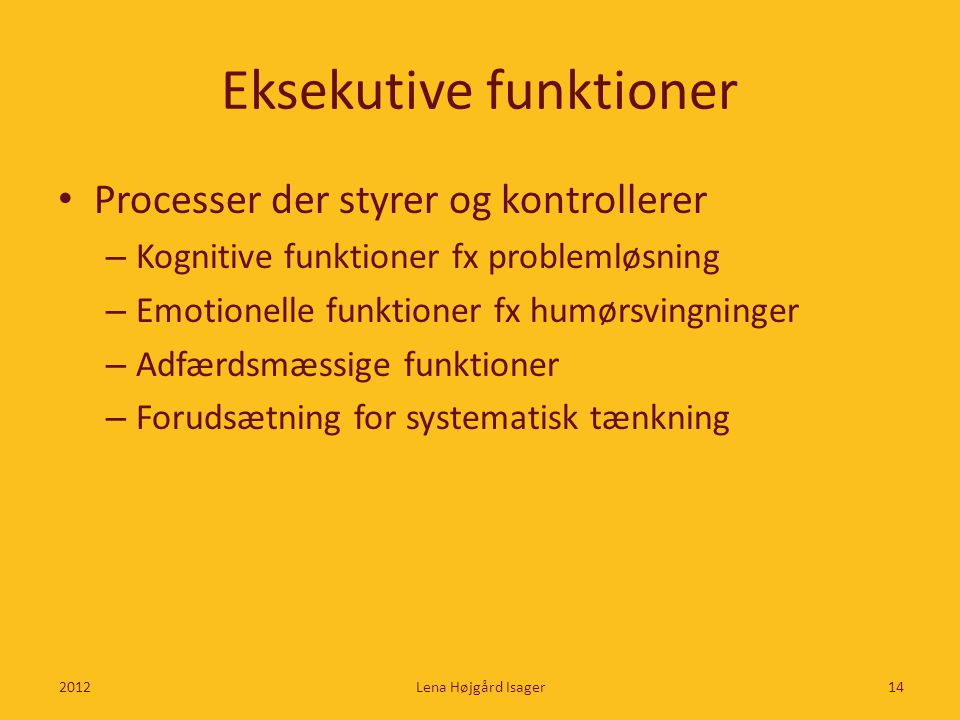 Eksekutive funktioner