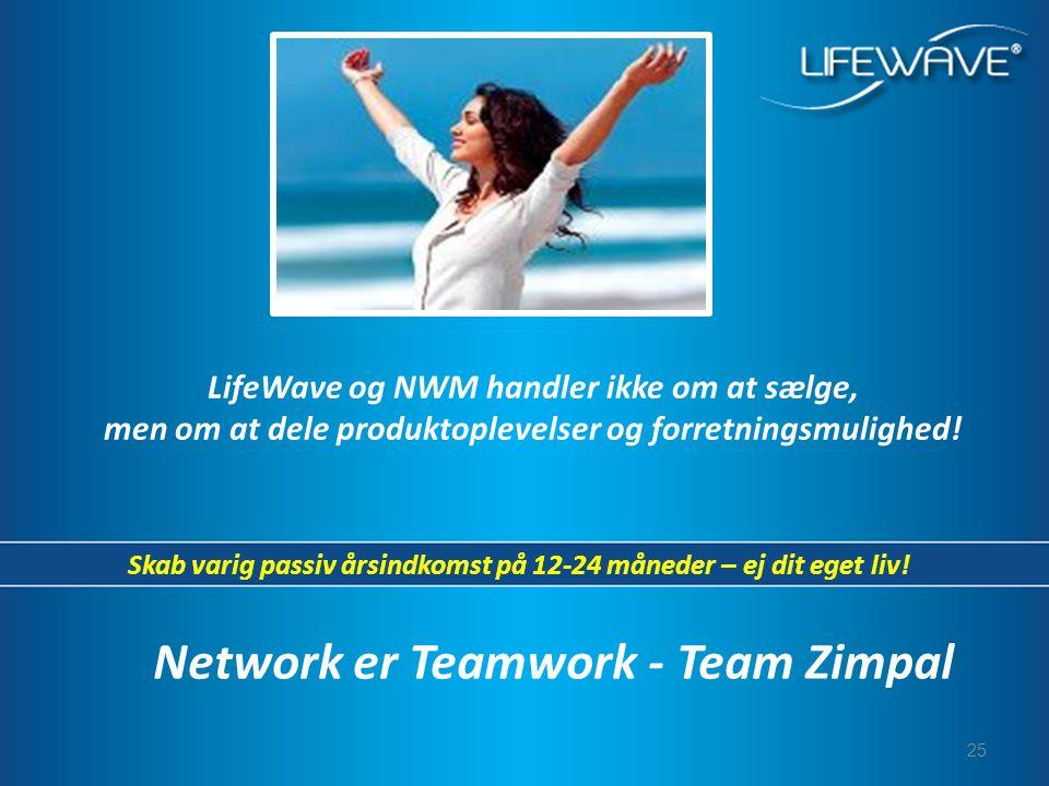 Network er Teamwork - Team Zimpal