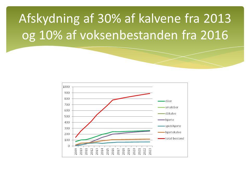 Afskydning af 30% af kalvene fra 2013 og 10% af voksenbestanden fra 2016