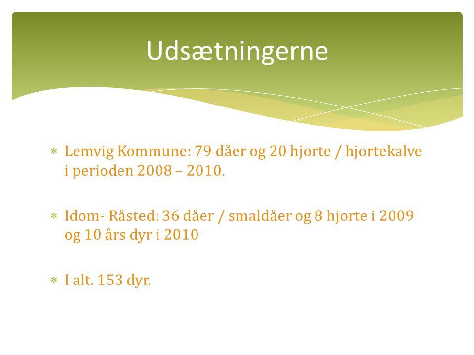 Udsætningerne Lemvig Kommune: 79 dåer og 20 hjorte / hjortekalve i perioden 2008 – 2010.