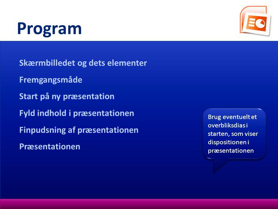 Program Skærmbilledet og dets elementer Fremgangsmåde