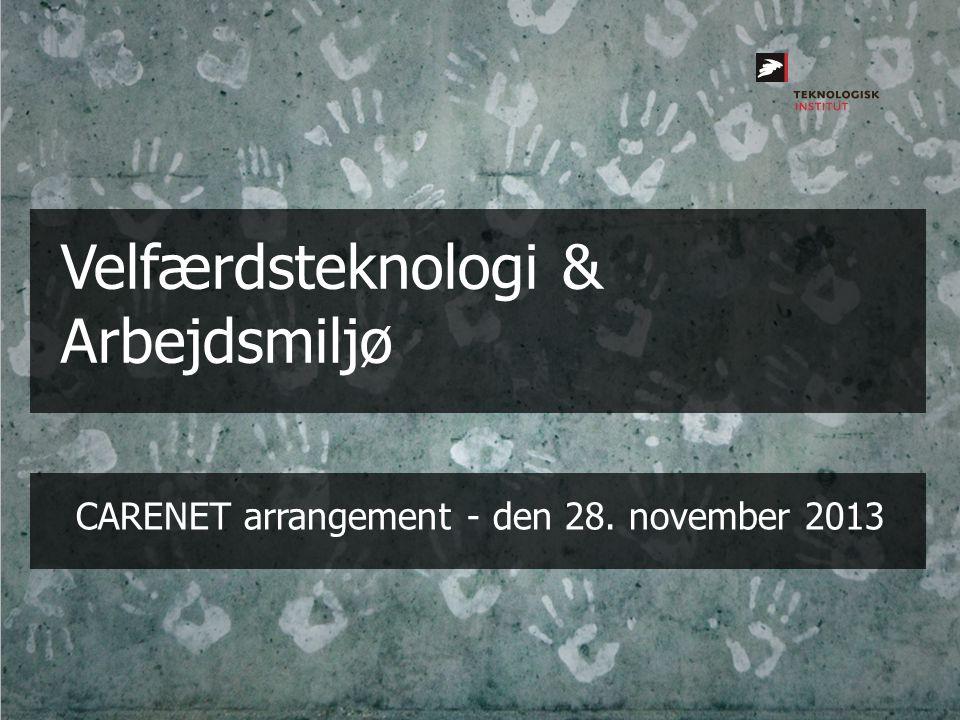 CARENET arrangement - den 28. november 2013
