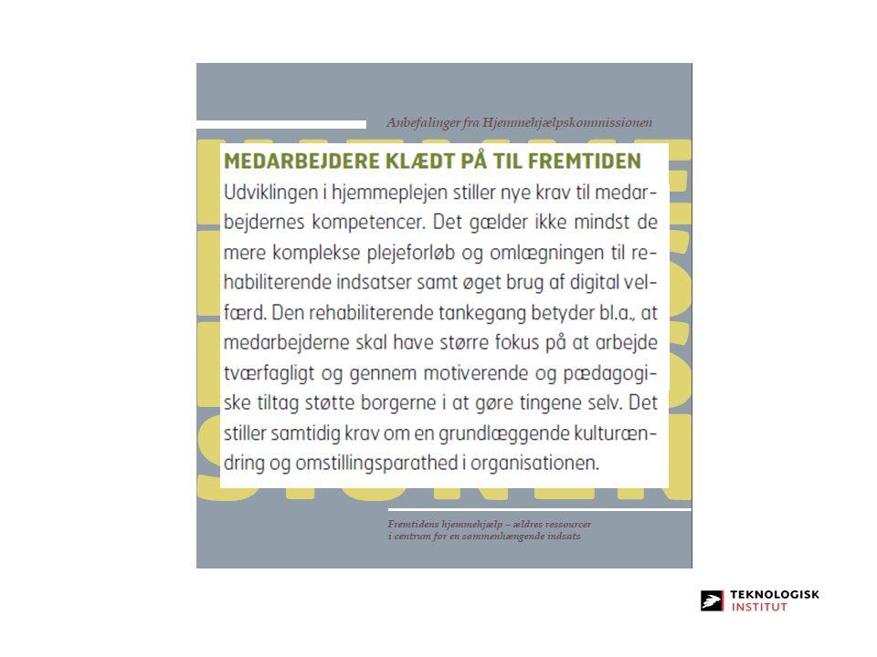 http://www. sm. dk/Publikationer/Sider/VisPublikation. aspx