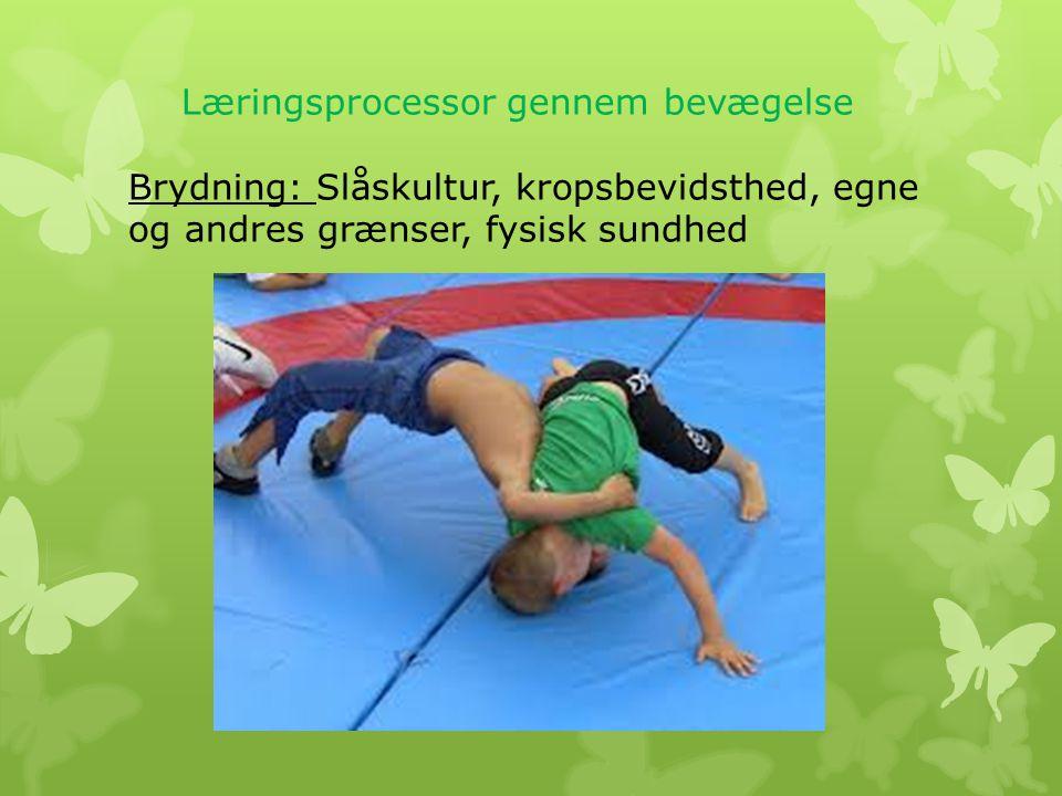 Læringsprocessor gennem bevægelse Brydning: Slåskultur, kropsbevidsthed, egne og andres grænser, fysisk sundhed