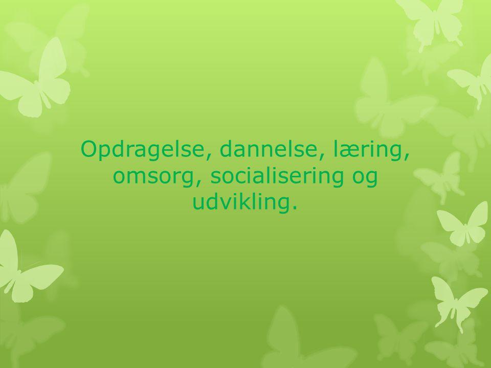 Opdragelse, dannelse, læring, omsorg, socialisering og udvikling.
