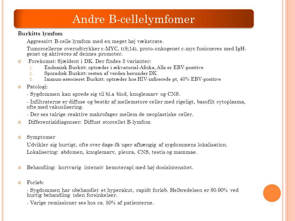 Andre B-cellelymfomer