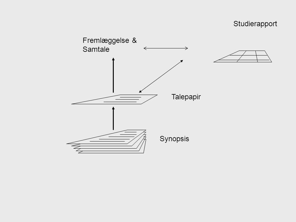 Studierapport Fremlæggelse & Samtale Talepapir Synopsis