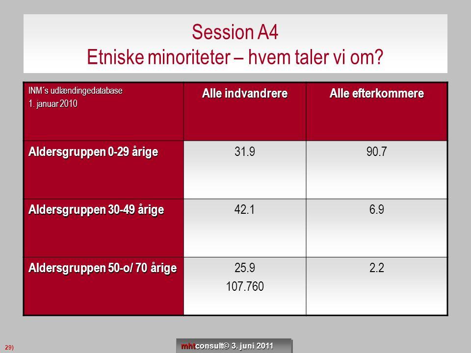 Session A4 Etniske minoriteter – hvem taler vi om