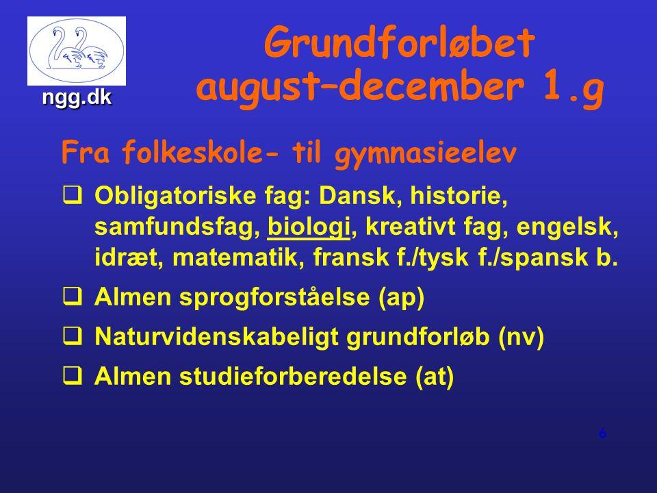 Grundforløbet august–december 1.g
