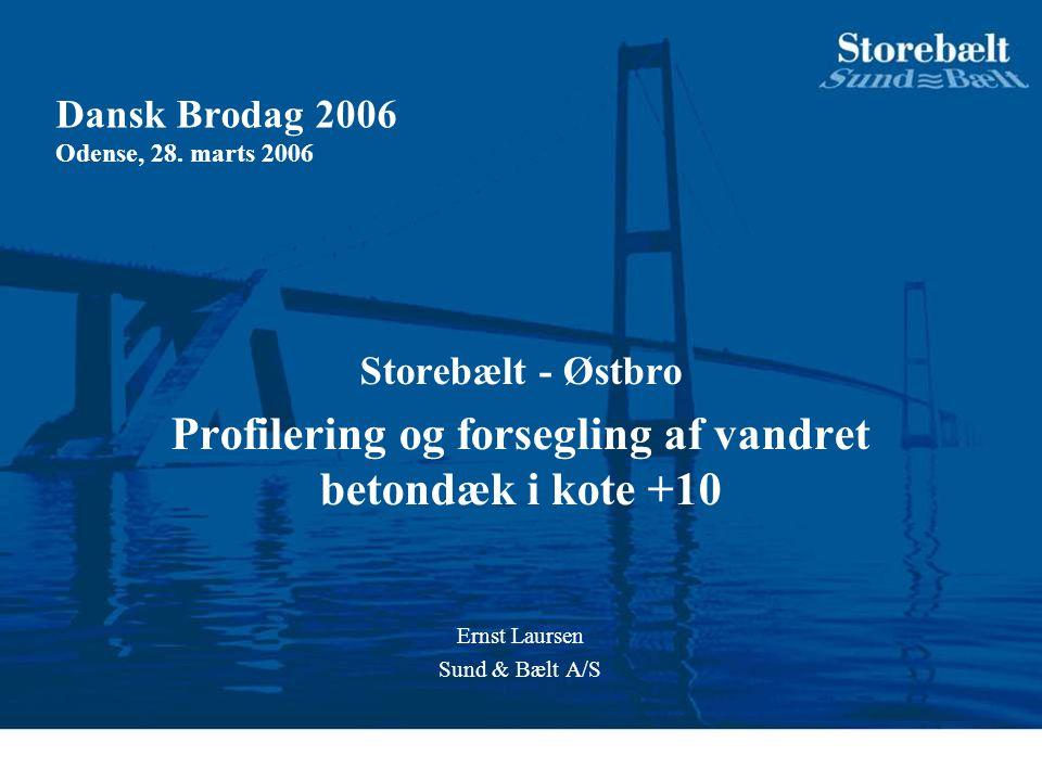 Dansk Brodag 2006 Odense, 28. marts 2006