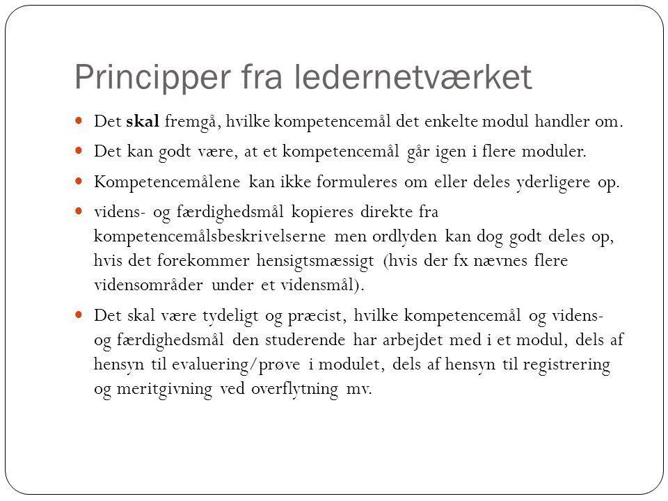 Principper fra ledernetværket