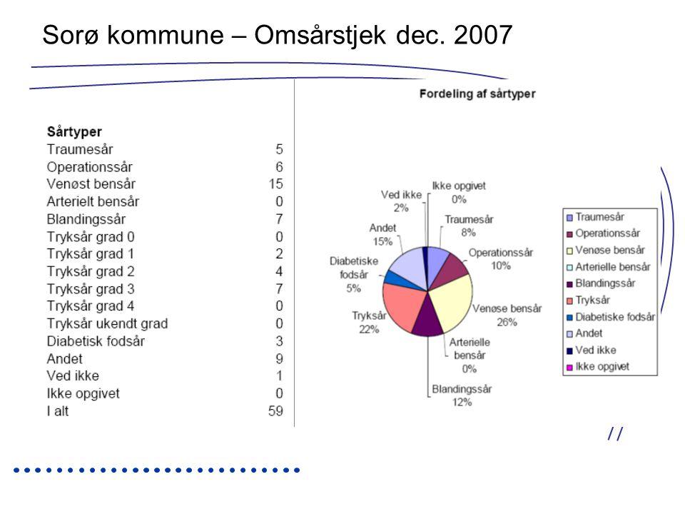 Sorø kommune – Omsårstjek dec. 2007