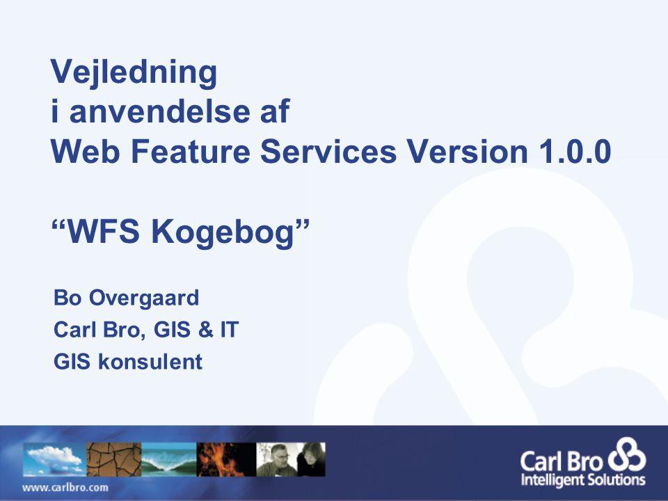Vejledning i anvendelse af Web Feature Services Version 1