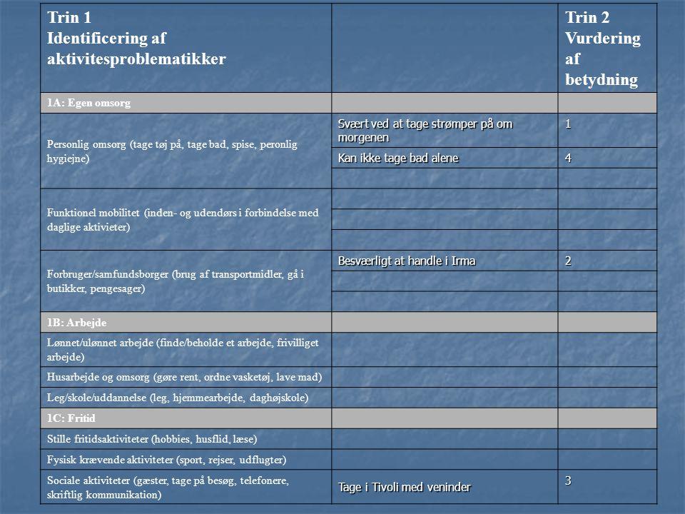 Identificering af aktivitesproblematikker Trin 2