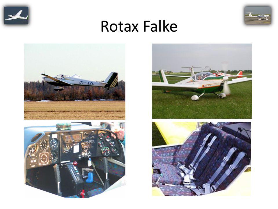 Rotax Falke 19