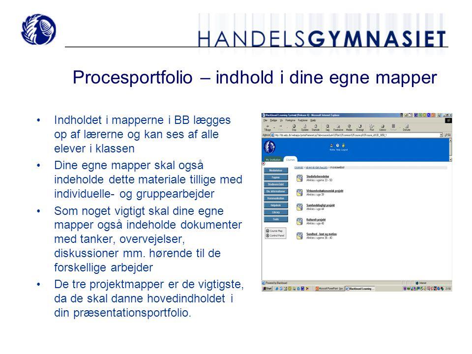 Procesportfolio – indhold i dine egne mapper
