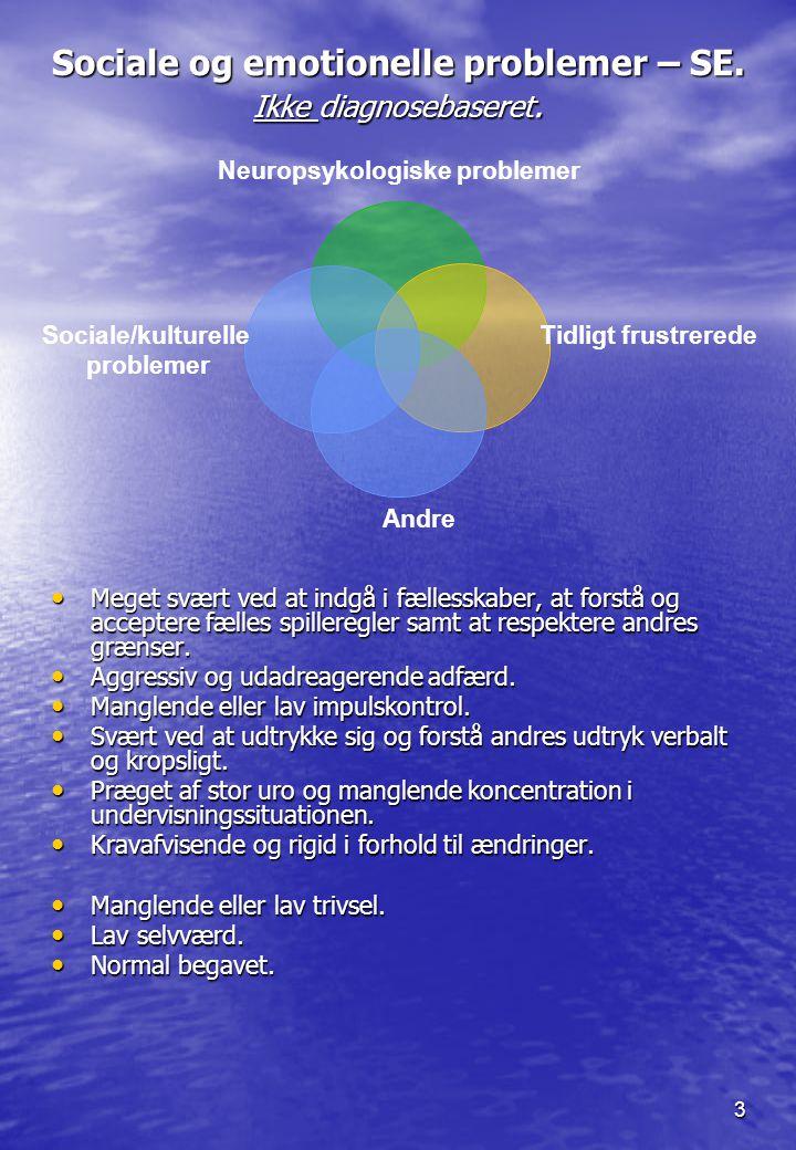 Sociale og emotionelle problemer – SE. Ikke diagnosebaseret.