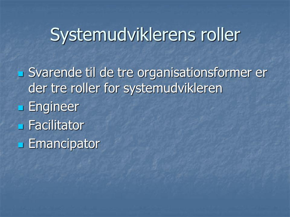 Systemudviklerens roller