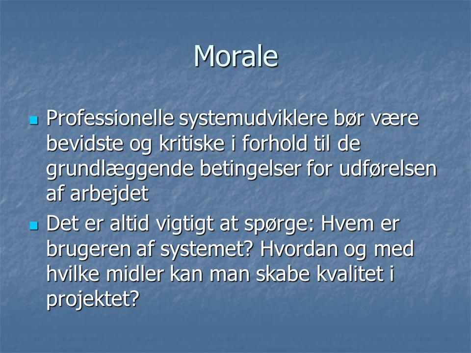 Morale Professionelle systemudviklere bør være bevidste og kritiske i forhold til de grundlæggende betingelser for udførelsen af arbejdet.