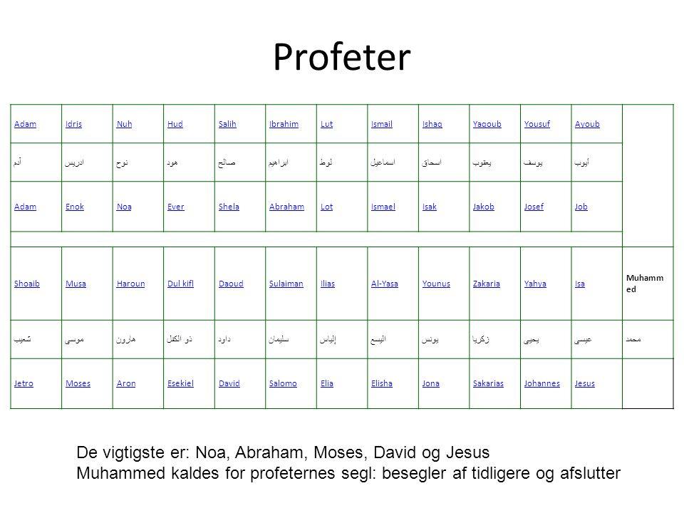Profeter De vigtigste er: Noa, Abraham, Moses, David og Jesus