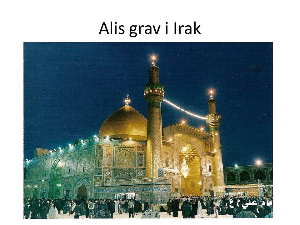 Alis grav i Irak