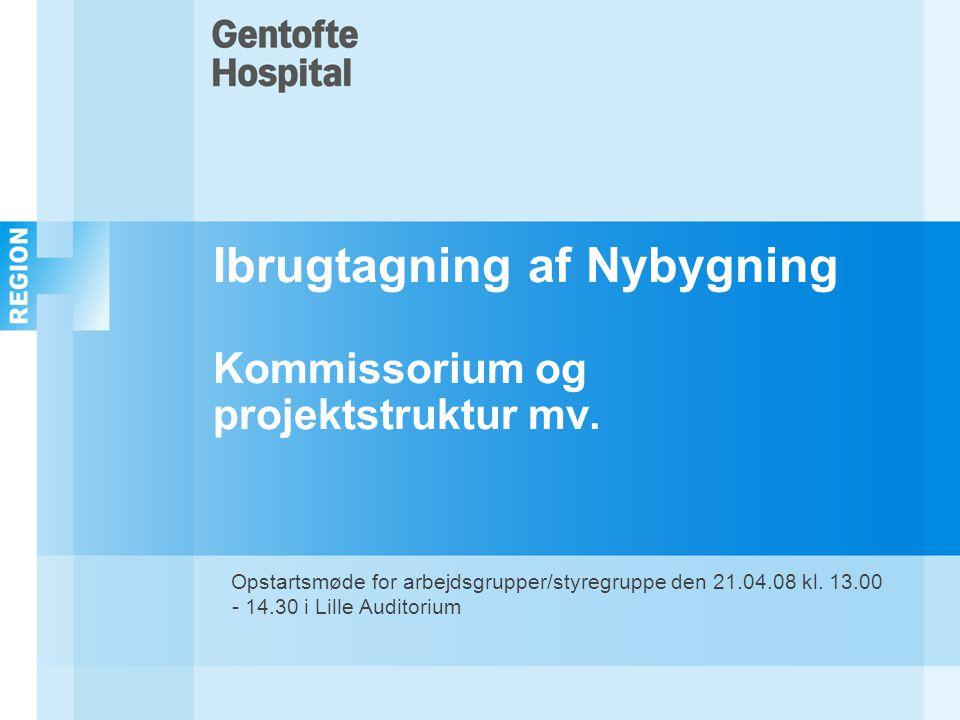 Ibrugtagning af Nybygning Kommissorium og projektstruktur mv.