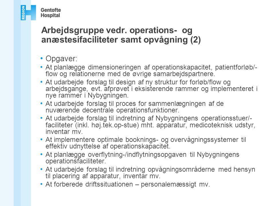 Arbejdsgruppe vedr. operations- og anæstesifaciliteter samt opvågning (2)