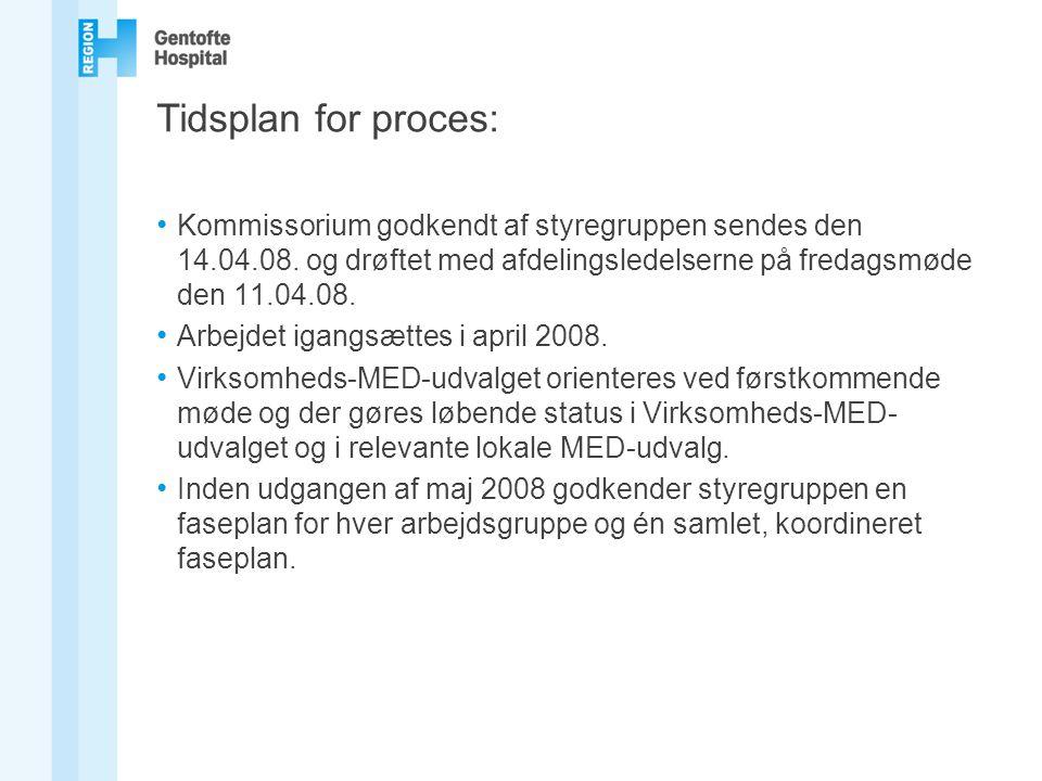Tidsplan for proces: Kommissorium godkendt af styregruppen sendes den 14.04.08. og drøftet med afdelingsledelserne på fredagsmøde den 11.04.08.