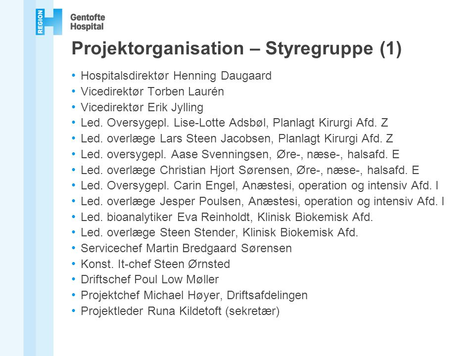 Projektorganisation – Styregruppe (1)