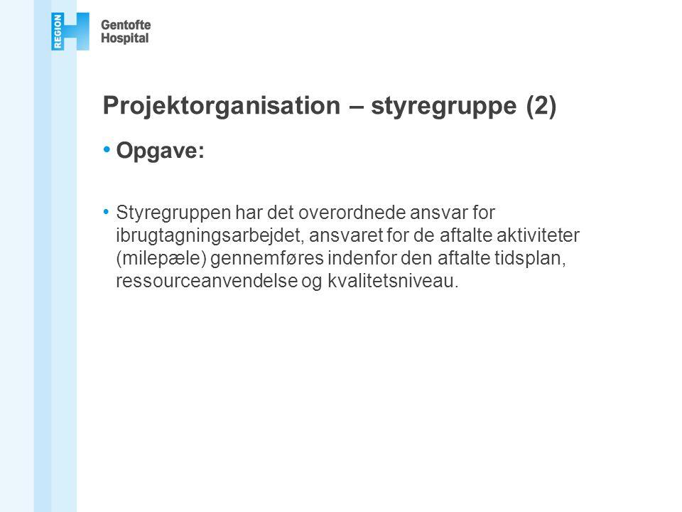 Projektorganisation – styregruppe (2)