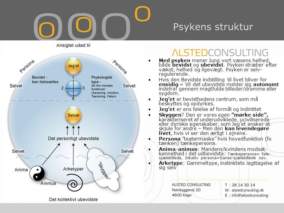 Psykens struktur