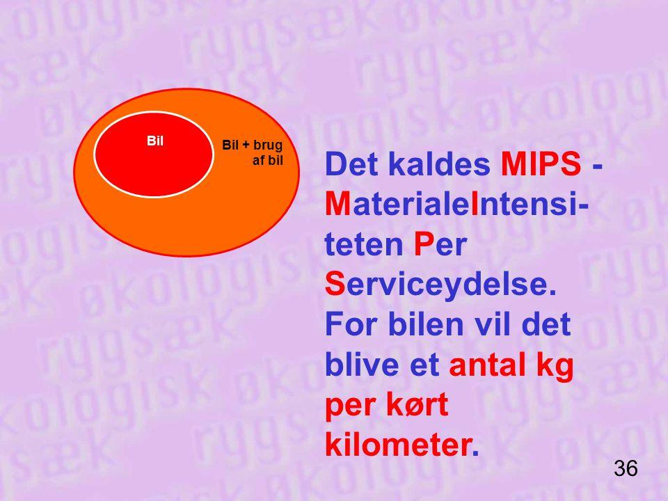 Det kaldes MIPS - MaterialeIntensi-teten Per Serviceydelse.