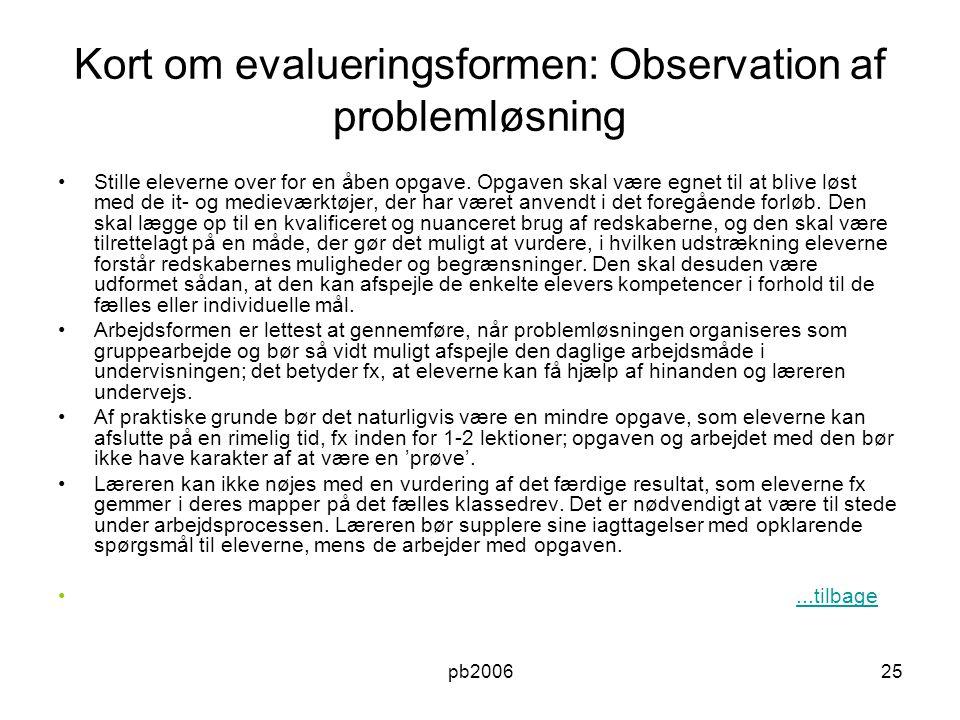 Kort om evalueringsformen: Observation af problemløsning