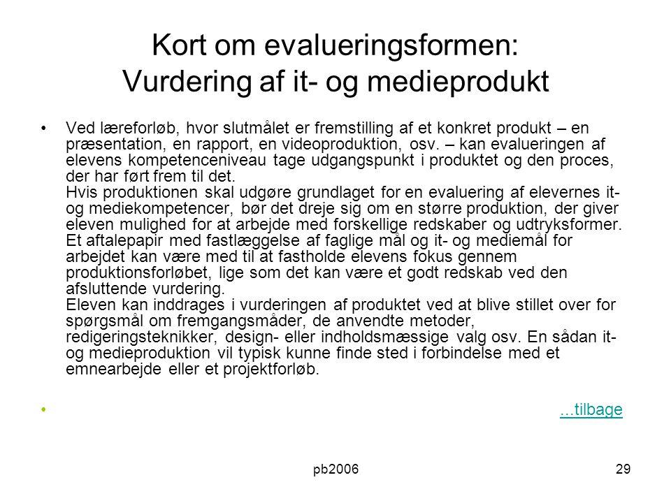 Kort om evalueringsformen: Vurdering af it- og medieprodukt