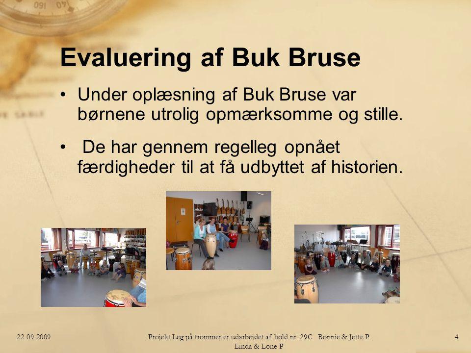 Evaluering af Buk Bruse