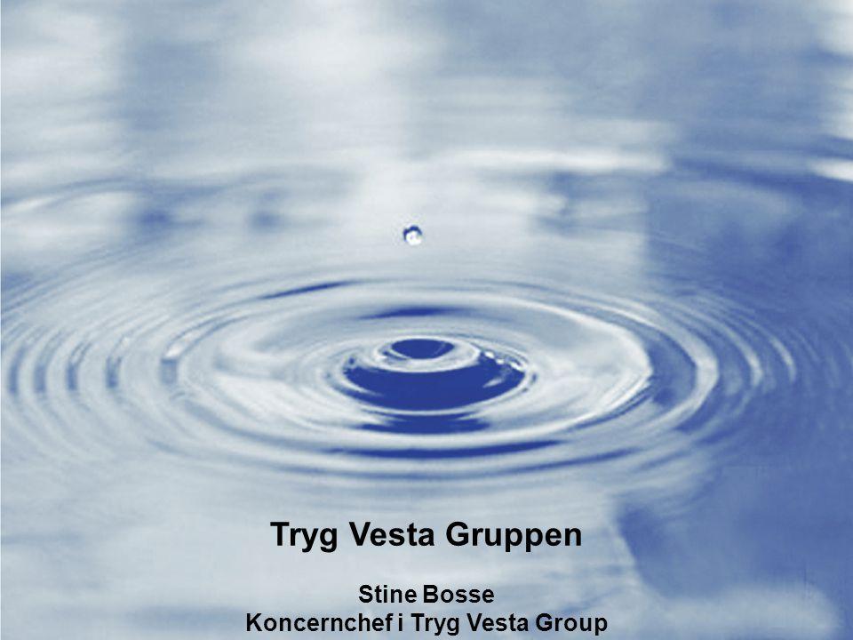Koncernchef i Tryg Vesta Group