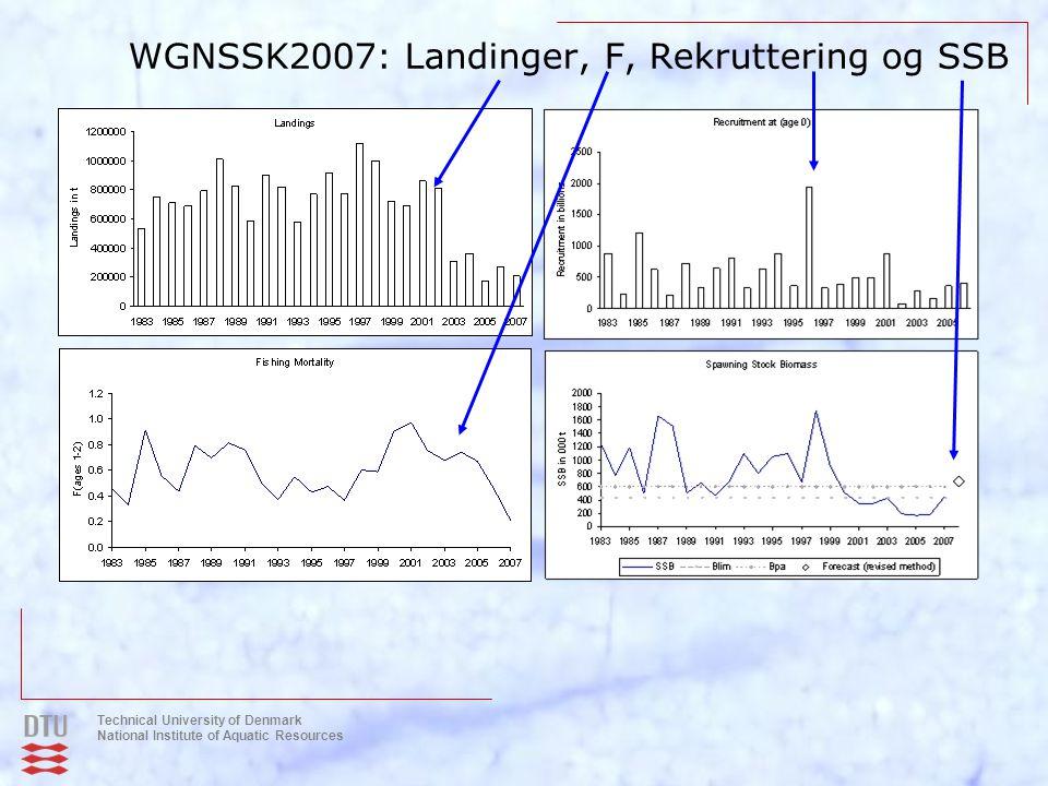 WGNSSK2007: Landinger, F, Rekruttering og SSB