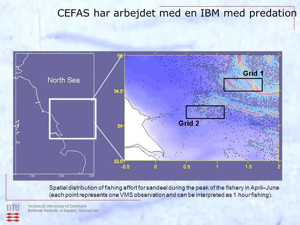 CEFAS har arbejdet med en IBM med predation