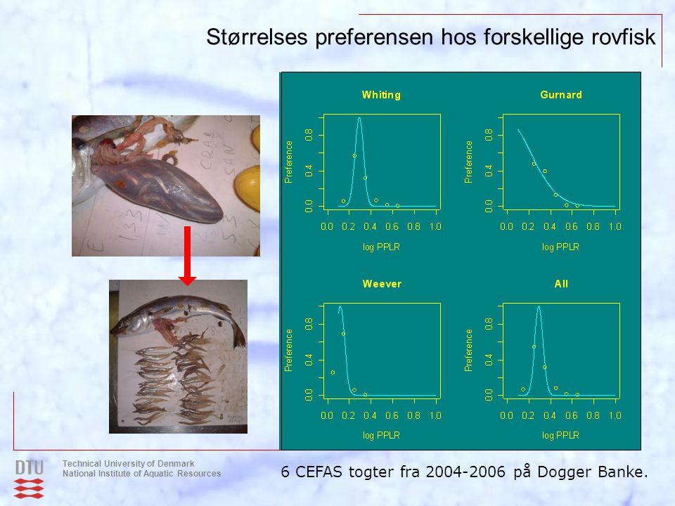 Størrelses preferensen hos forskellige rovfisk