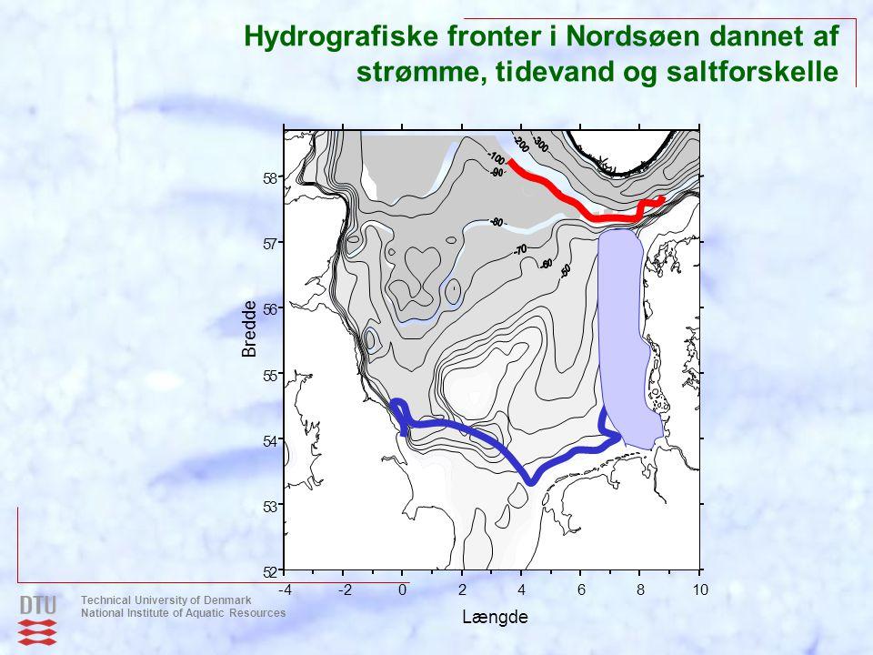 Hydrografiske fronter i Nordsøen dannet af strømme, tidevand og saltforskelle