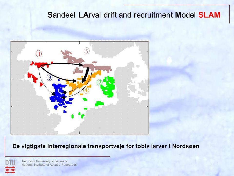 Sandeel LArval drift and recruitment Model SLAM