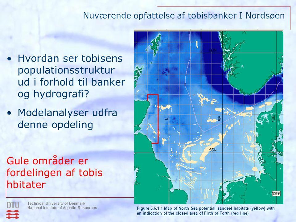 Nuværende opfattelse af tobisbanker I Nordsøen