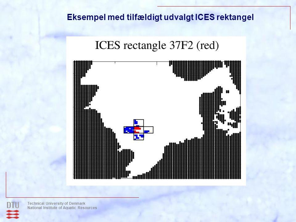 Eksempel med tilfældigt udvalgt ICES rektangel