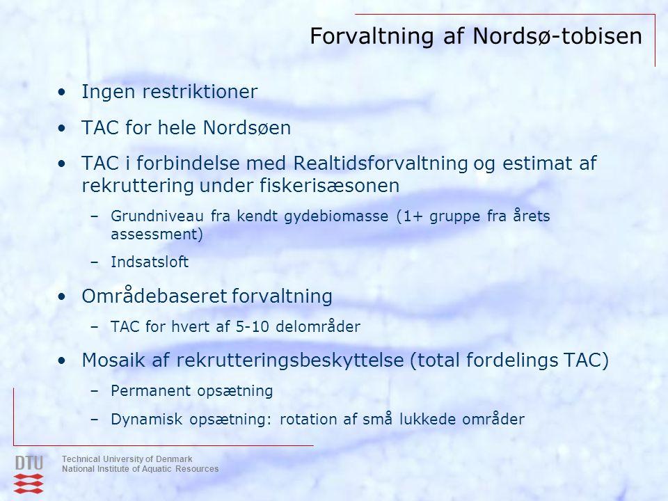 Forvaltning af Nordsø-tobisen