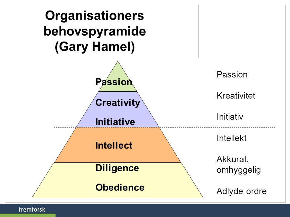 Organisationers behovspyramide (Gary Hamel)
