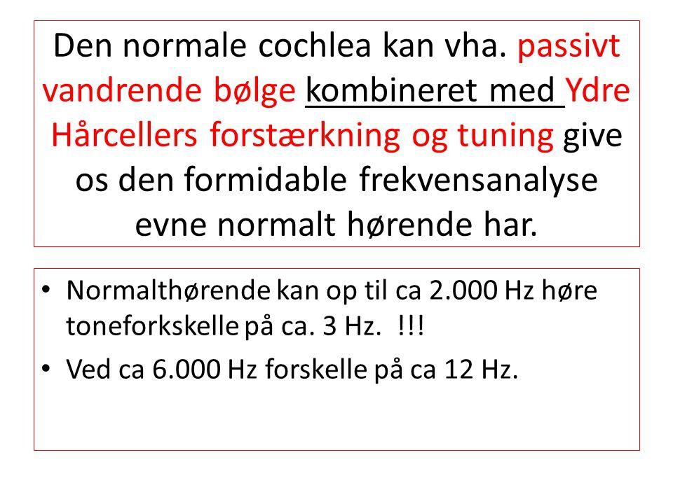 Den normale cochlea kan vha