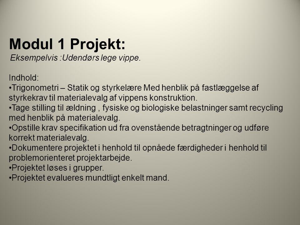 Modul 1 Projekt: Indhold: