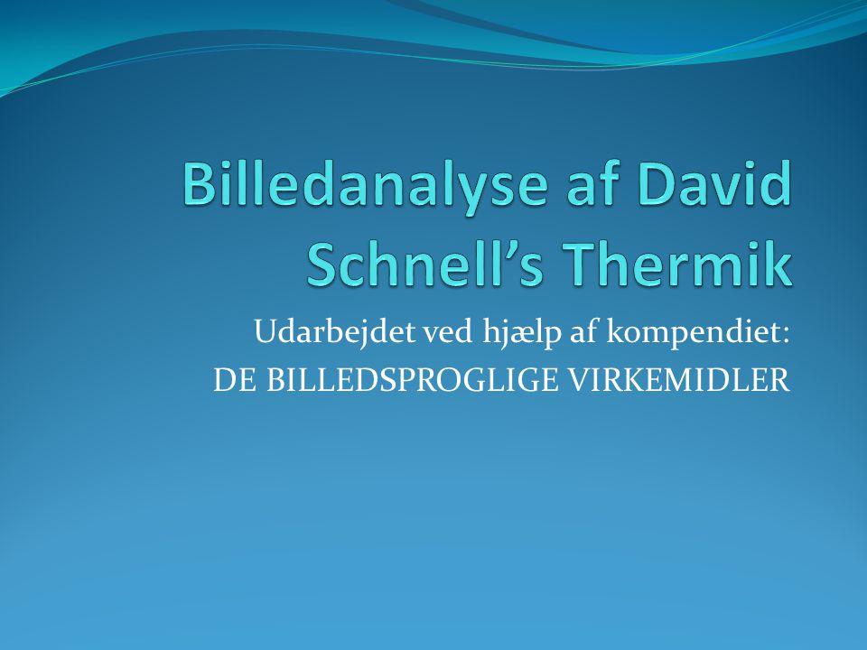 Billedanalyse af David Schnell's Thermik