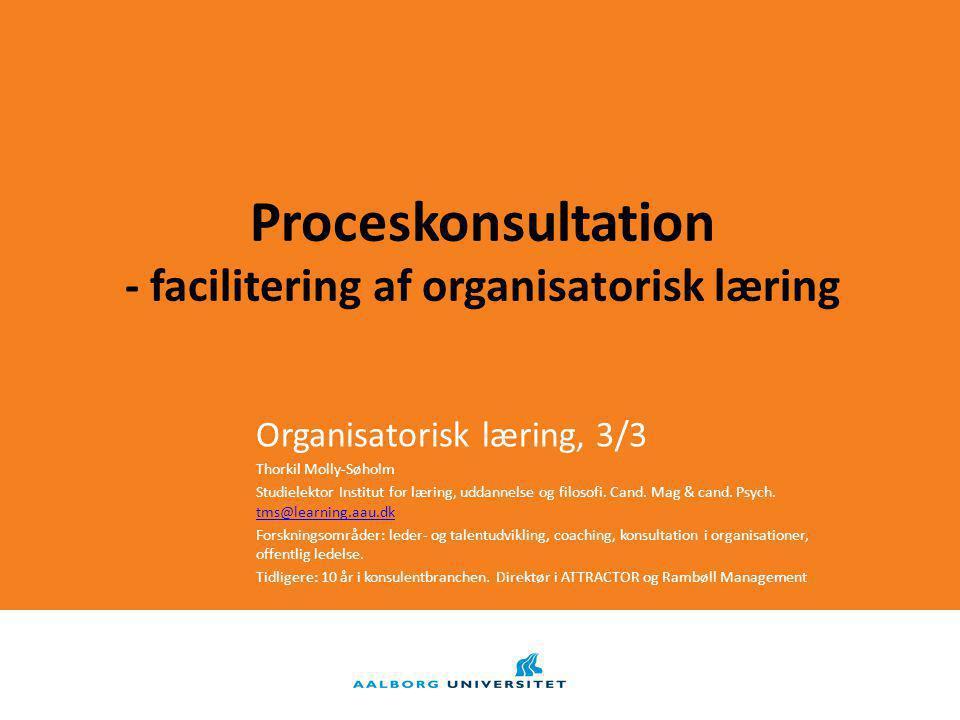 Proceskonsultation - facilitering af organisatorisk læring